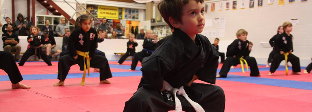 Family martial arts classes, Bury St Edmunds